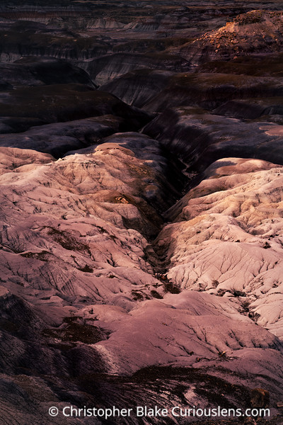 Dark Badlands - Petrified Forest