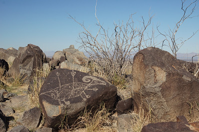Three Rivers Petroglyph Site