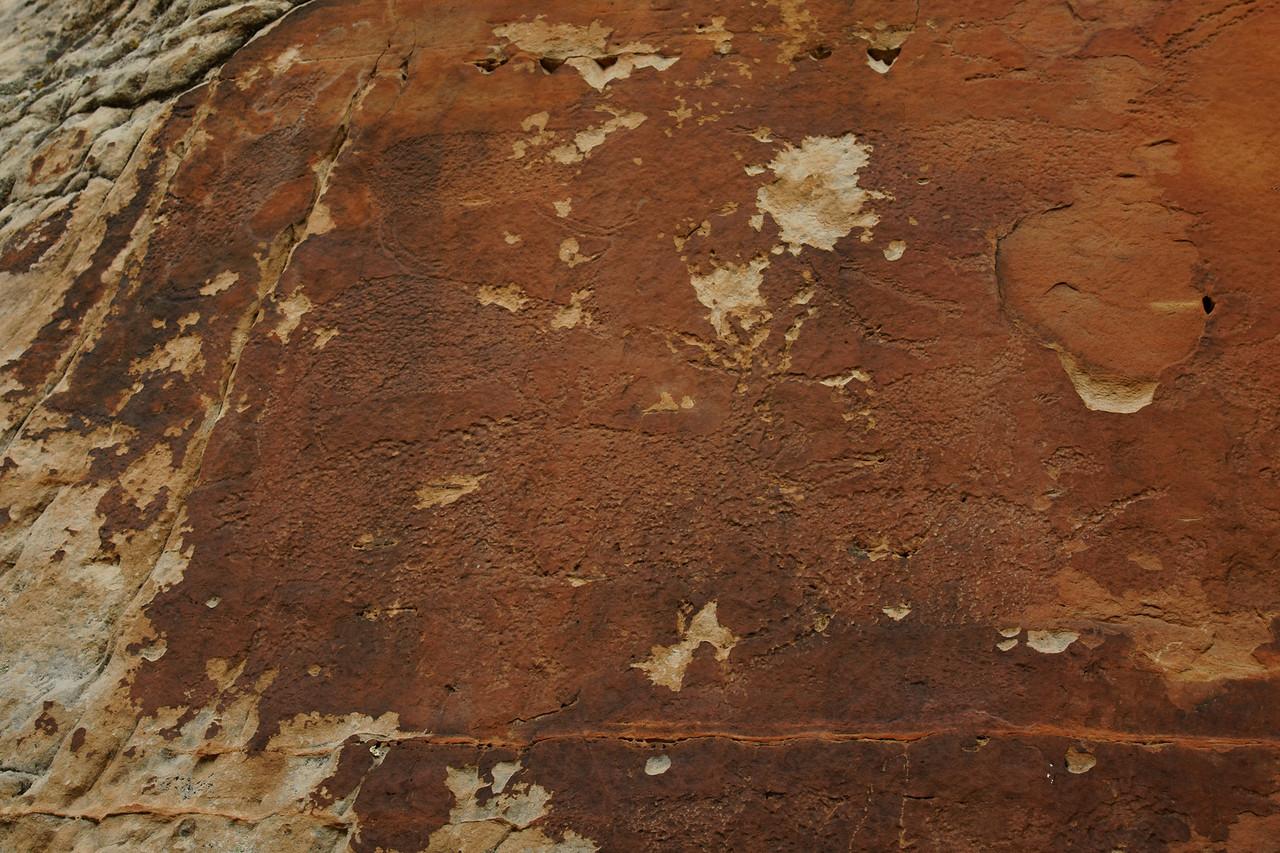 More bison petroglyphs