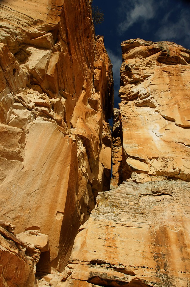 View up the canyon wall.