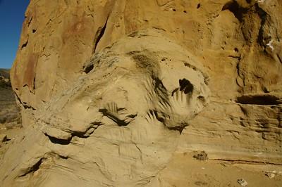 White Mountain Petroglyphs