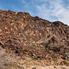 Perhaps one of the most extensive petroglyph displays I've seen so far. This entire wall was covered from top to bottom.
