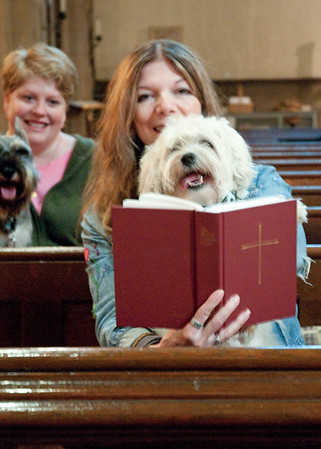 Pet Parishioners.  They gathered for the 2010 St. Francis Day Blessing of the Animals at the Episcopal Church of the Good Shepherd in Manhattan.