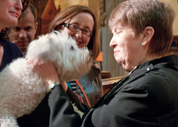 A canine kiss.  And seminarian Sandra Kirby McLeod is about to get it during the 2010 St. Francis Day Blessing of the Animals at Manhattan's Episcopal Church of the Good Shepherd.