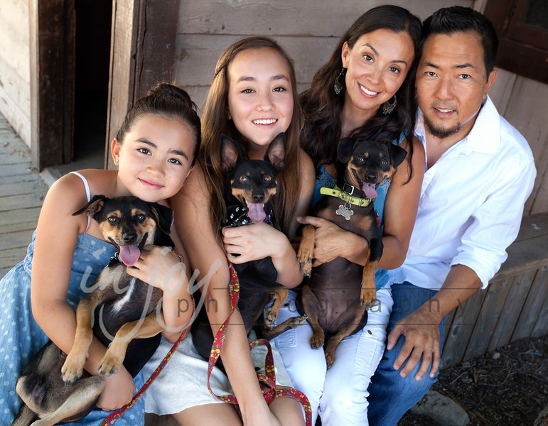 "Jordan (dog on far left) with his forever family after having been rescued by Hope for Paws.  <a href=""http://www.hopeforpaws.org"">http://www.hopeforpaws.org</a>) and La on Cloud Nine  <a href=""http://www.laoncloud9.org"">http://www.laoncloud9.org</a>.  <br /> Someone had cut off his leg and thrown him into the LA River when he was a puppy, and found shivering and trying to stay dry by sitting on a potato chip bag.  His incredible story can be seen at this link:  <a href=""https://www.youtube.com/watch?v=Zy97RgzxhJg"">https://www.youtube.com/watch?v=Zy97RgzxhJg</a>"