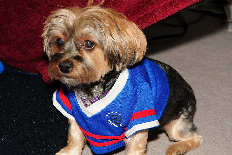 20120108_Daisy_006_out