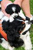 20120615_Charlie_021_out