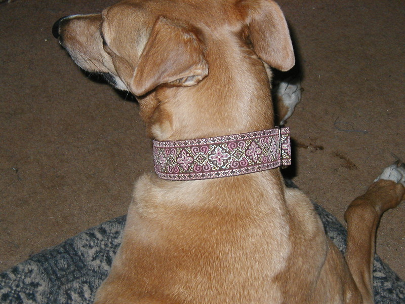 Ruby wearing Celtic Cross, Rose