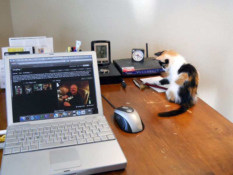 MISS MOLLY: OFFICE ASSISTANT