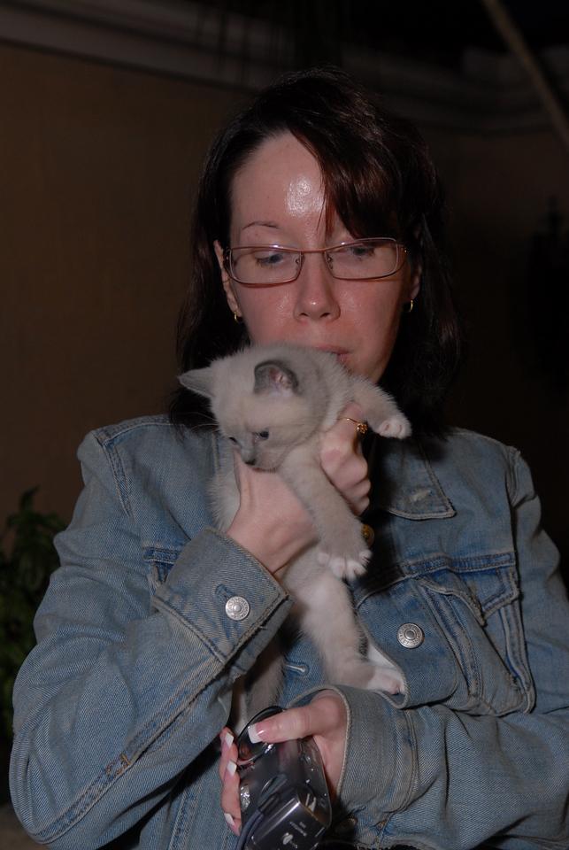 2007 04 12 - New Kitty 008