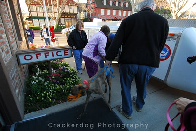 Teddy gets a hound out as Roger Deeringer holds the leash