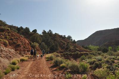 Gayle hikes further up Pugh Canyon