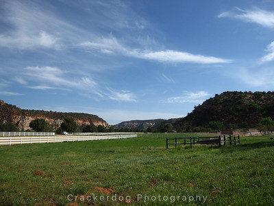 A horse pasture at Best Friends Animal Society