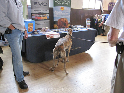 Duncan checks out the free kibble samples