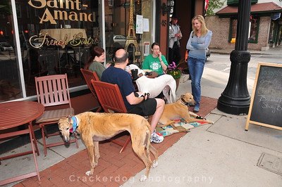 Meredith, PJ, and Colleen chat with Aimee; greyhounds are (left to right) Salem, Turbo, and Inu