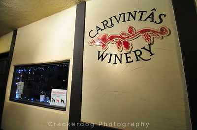 The Carivintas Winery shop -- one of the many Solvang businesses that invited us to step inside with our hounds