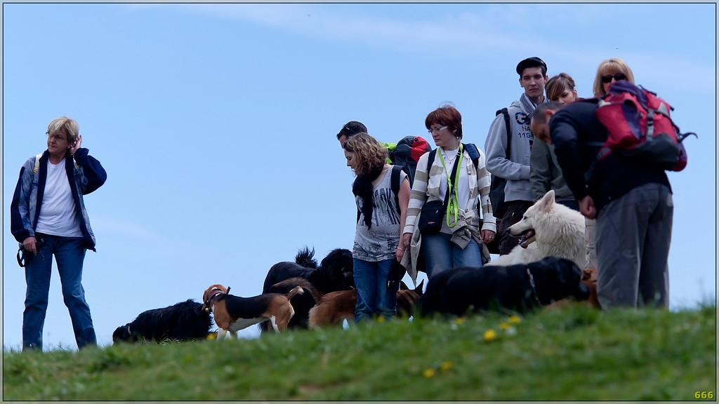 IMAGE: http://photos.corbi.eu/Pets/2011-04-23-Randonnées-des/i-9gJxcKH/0/XL/_mg_8778%20copie-XL.jpg