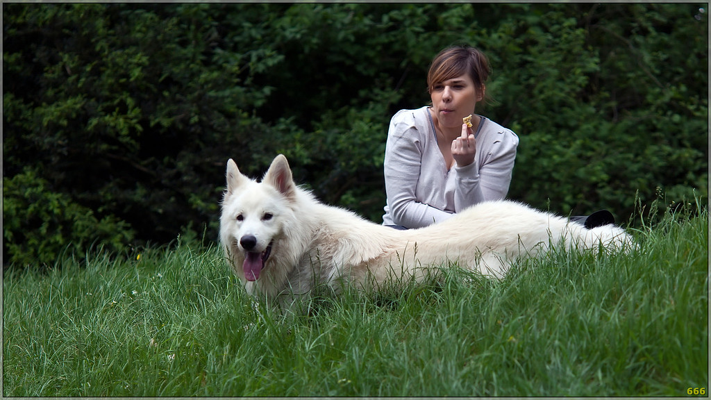 IMAGE: http://photos.corbi.eu/Pets/2011-04-23-Randonnées-des/i-p36pjtZ/0/XL/_mg_8374%20copie-XL.jpg
