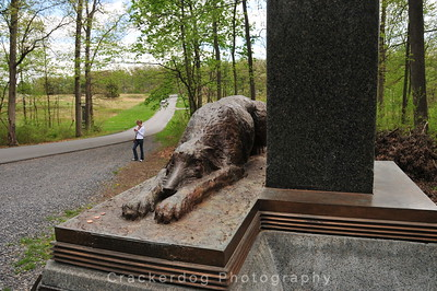 The Irish Wolfhound statue that's part of the monument