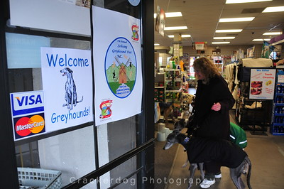 Lemo's always welcomes the greyhounds to their store. And they are always ready to help us in any way they can.