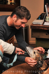 Paul Ramos of Carivintas pets a greyhound visitor.