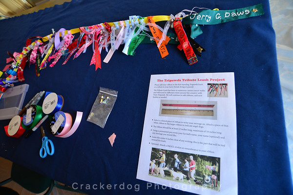 The Tripawds Tribute Leash Project