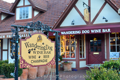 Yes, it is called the Wandering Dog Wine Bar.