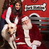 20141207-Mostly Mutts - Bark Station-347
