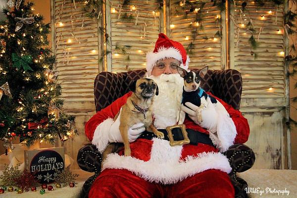 2016 Santa Paws - Strumph