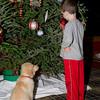 3201 Dexter and Coop with Christmas tree 12 weeks old  week 3