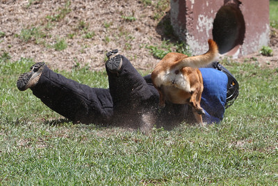 Face Plant with Kelly on top! Don't miss new photos.  Get notifications via: