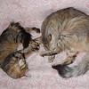 Doum and his mother Ildiko<br /> Doum et sa mère Ildiko