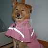 Angel <br /> Modeling her raincoat