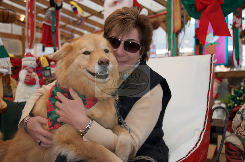 Angel & Mom enjoying the sleigh.