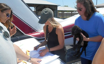 Checking against the transport Sheet before we put them in the pen....