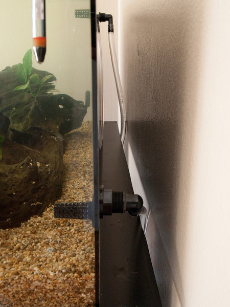new_aquarium-1