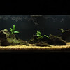 new_aquarium-3