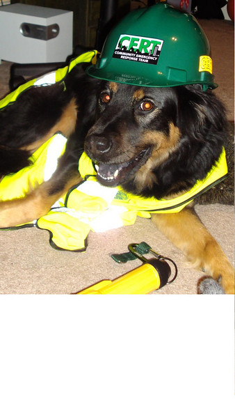 Jamie is a rescue worker with an unbeatable smile.