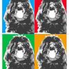 Warhol style Shih-tzu Ella