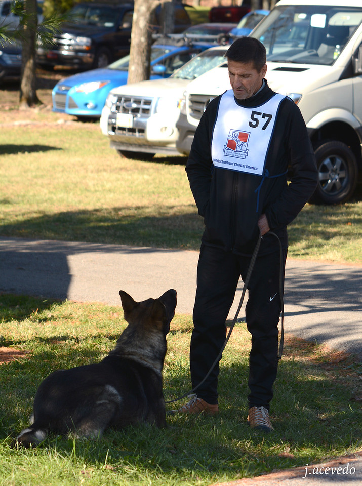 Bill & Athos, waiting to take the obedience field<br /> 2015 USCA National Championships