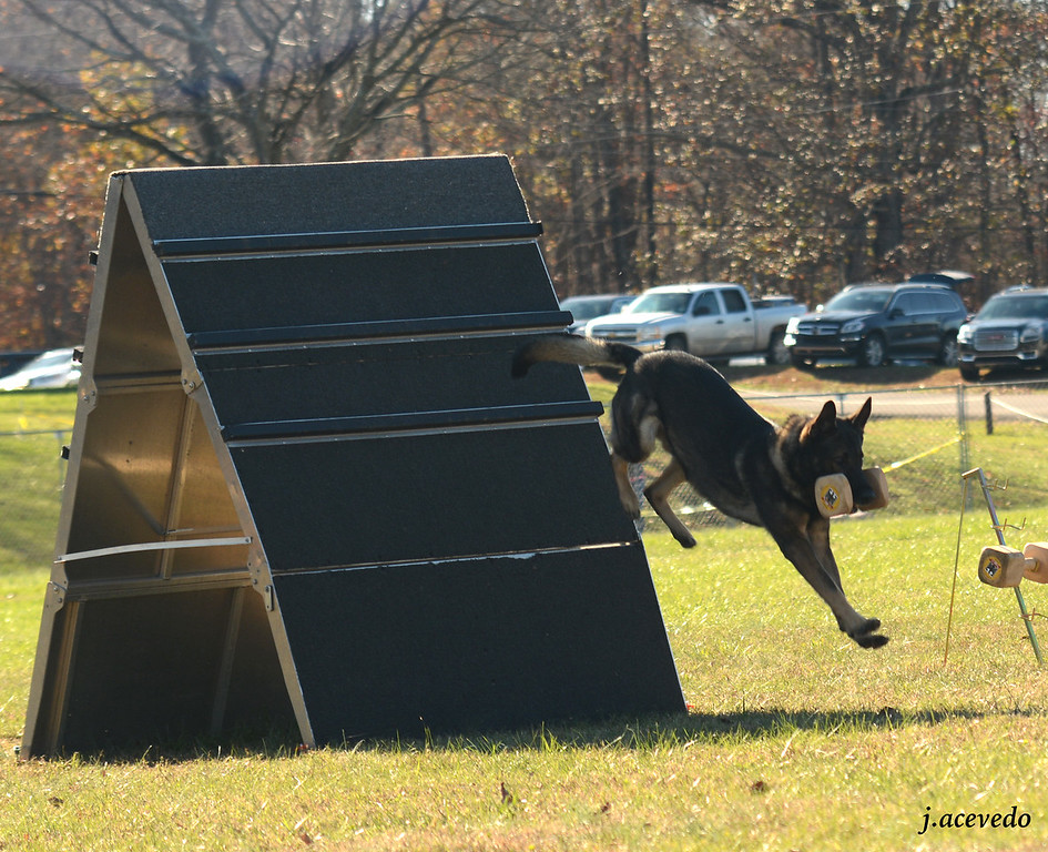Retrieve over the a-frame<br /> 2015 USCA National Championships