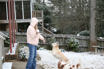 Kelly throwing snowballs for the dogs - March 8, 2008.