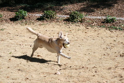 Jasmine running with the ball - Feb 2008.