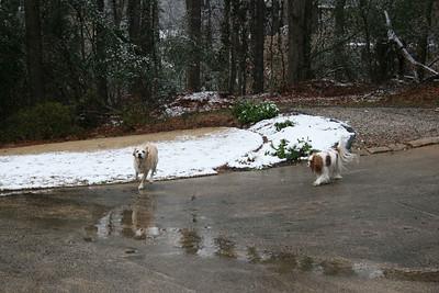 Feb snow.
