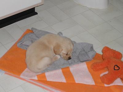 Baby Jasmine sleeping.