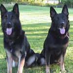 Kway and Ayla, spring 2004.