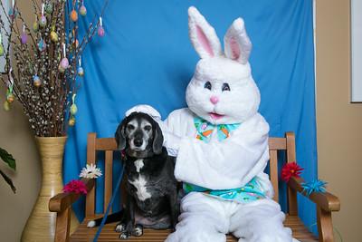 BVH-Easter_0014