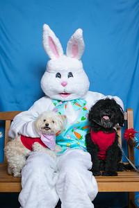 BVH-Easter_0027