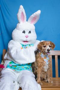 BVH-Easter_0022