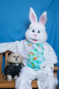 BVH-Easter_0007
